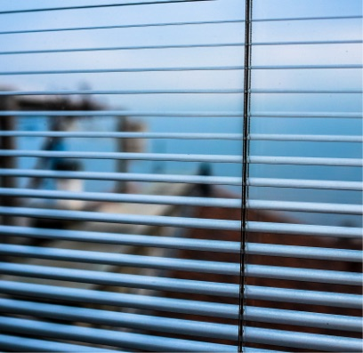 Securebars - Window Blinds - 2